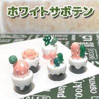 【単品】ホワイト 立体 サボテン/プラパーツ